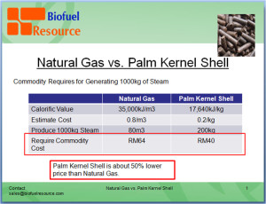 Natural Gas vs. Palm Kernel Shell Comparison