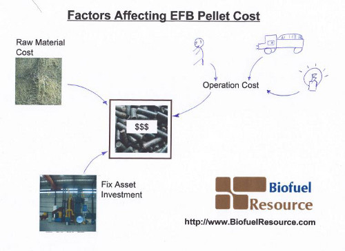 Factors Affecting EFB Pellet Price