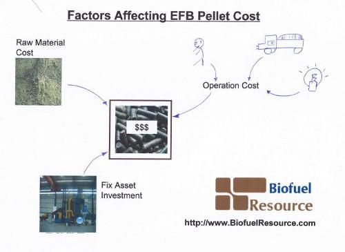 Factors Affecting EFB Pellet Price