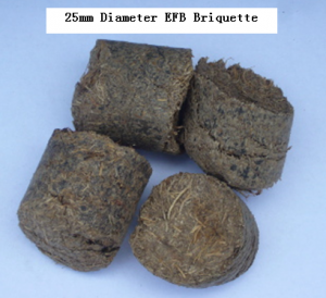 25mm Diameter EFB Briquette