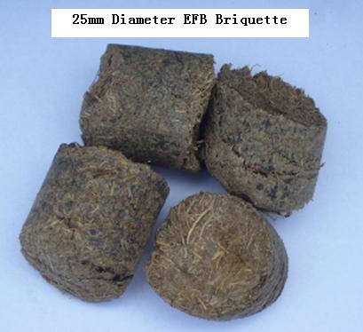 25mm Diameter EFB Briquette